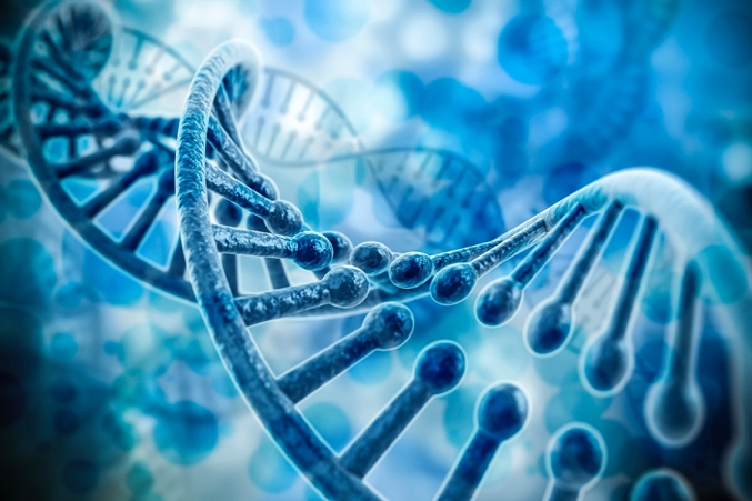 CRISPR-system.jpg